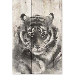Dřevěná nástěnná dekorativní cedule Surdic Watercolor Tiger, 40 x 60 cm