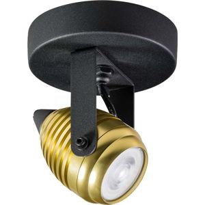 Nástěnné/stropní svítidlo v černé a zlaté barvě ETH Wasp Uno