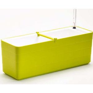 Zelené-bílý samozavlažovací truhlík Plastia Berberis , délka59 cm