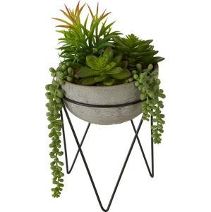 Umělý sukulent v šedém květináči Premier Housewares Fiori