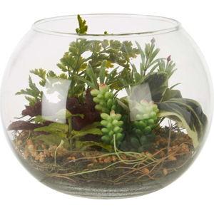 Umělý sukulent ve skleněném květináči Premier Housewares Fiori Sucu
